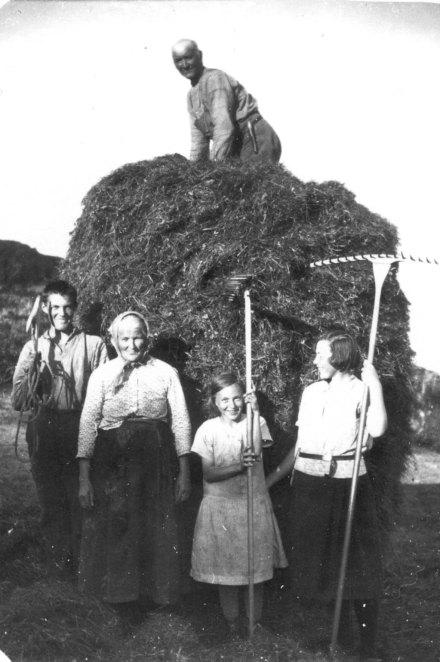 7. Høystakk under arbeid på Munkhammaren 1930