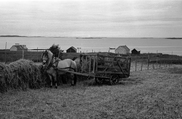 Frøya 1974