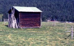 Sverige 1999 1